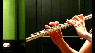 Armstrong Heritage Handmade Professional Flute - Demo Low-Mid Range