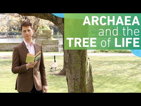 Archaea and the Tree of Life