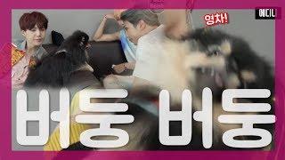 "[BTS] (방탄소년단)  "" 안녕하세요 연탄이에요 저는 오늘 아주 힘든 하루를 보냈어요.. "" (Feat. 부럽다)"