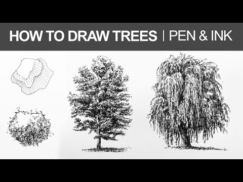 How to Draw Trees with Pen and Ink