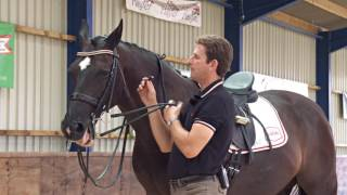 Fit a double bridle correctly with dressage rider and trainer Paul Hayler