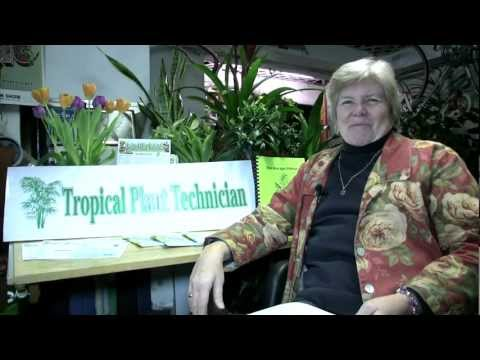 Tropical Plant Technician | Seattle Horticulture Training