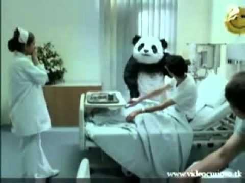 Pandasexual