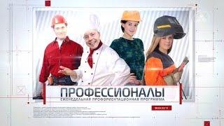 Профессионалы  Оператор ООУ 2018 05 03