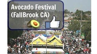 Avocado Festival (FallBrook CA)