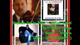 Stelian de la Blaj - Daca Iubesti cu Adevarat LIVE 2014