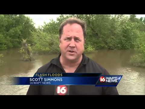 Flood waters bring alligators