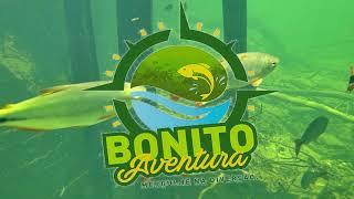 Flutuação Bonito Aventura - Rio Formoso, Bonito/MS.