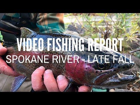Spokane River - Video Fishing Report - Late Fall