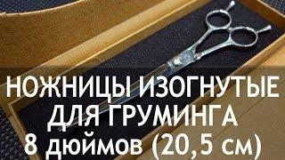 Ножницы для груминга изогнутые 8 дюймов (20,5 см) CY-56(http://thezoo.ru/ Ножницы для груминга изогнутые 8 дюймов (20,5 см) CY-56 Недорогие и качественные ножницы для груминга...., 2013-11-28T07:17:43.000Z)