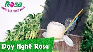 Hướng dẫn pha chế Sinh Tố Dừa (Coconut Frappe)