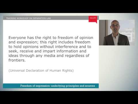 Mod. 1, Ch. 1: The Right to Freedom of Expression in Law