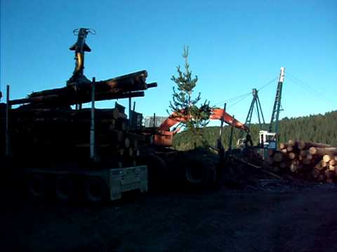Cable Logging in Australia