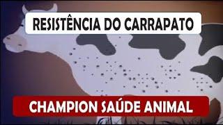 RESISTÊNCIA DO CARRAPATO