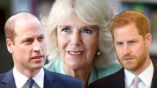 After A Decade Marrying Charles, This Is What William And Harry Really Think About Camilla