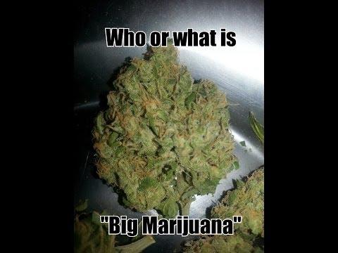 "Who or what is ""Big Marijuana""?"