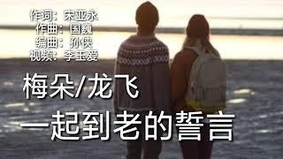 《一起到老的誓言》演唱:梅朵/龙飞