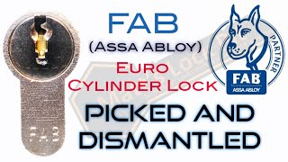 FAB Euro Cylinder Lock Picked and Dismantled