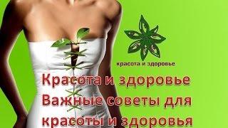 Красота и здоровье Важные советы для красоты и здоровья
