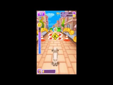 Pet Run - Gameplay