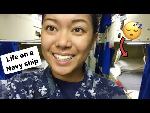 Navy Ship (Destroyer) Berthing Tour