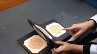 Ishihara Plates Assessment