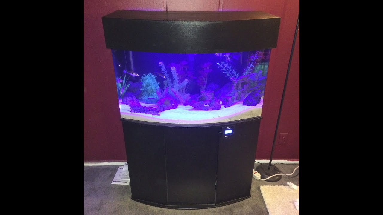 46 gallon bow front acrylic aquarium set up and canopy for Acrylic vs glass fish tank