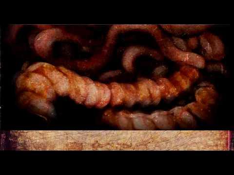 Bestiario - ¿Que es una Penanggalan?