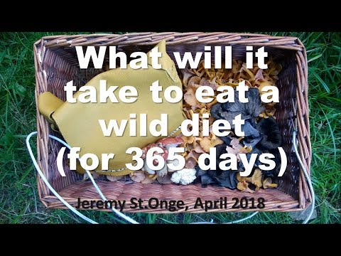 What will it take?  One year eating wild