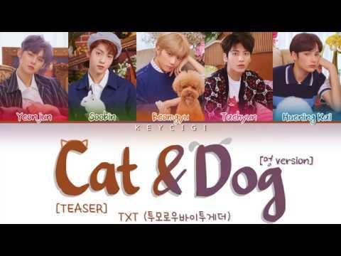 txt-(투모로우바이투게더)---cat-&-dog-(멍-version)-teaser-(color-coded-lyrics-eng/rom/han)