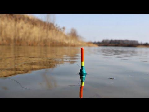 Как ловить плотву весной на поплавочную удочку? Как ловить плотву в марте апреле и мае? Плотва