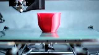 IM3D - 3D Printed Rose