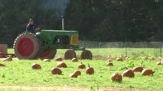 Picking Pumpkins and Apples at Von Thun Farms