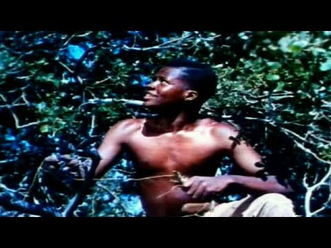 THE MARK OF THE HAWK  Eartha Kitt  Sidney Poitier  Full Length Drama Movie  English  HD  720p