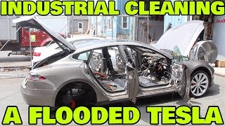 Industrial Cleaning My Moldy Tesla
