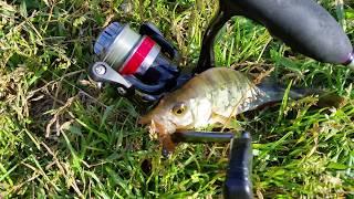 Tipsy від Crazy Fish не залишить без улову на риболовлі