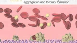 Vena8 Fluoro+ Biochip Tutorial
