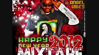 Happy New Year 2012 Mixtape by DJLass Angel Vibes (November Refix 2013)