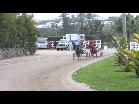 Harness Pony Racing Bermuda February 11 2012
