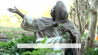 Histoires Africaines I - Kalalé