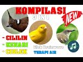Kompilasi Suara Masteran  In  Cililin Kenari Ciblek Terapi Air  Mp3 - Mp4 Download