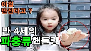 만 4세 미녀의 파충류 첫 핸들링 도전 !!   행동과…
