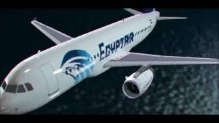 شاهد ما الذي أسقط طائرة مصر للطيران view what that brought down Egypt Air