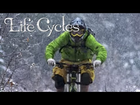 Life Cycles - Official Trailer - Stance Films [HD]