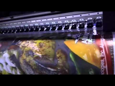 Latex printer 1.6m