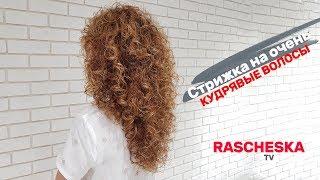 Стрижка на очень кудрявые волосы