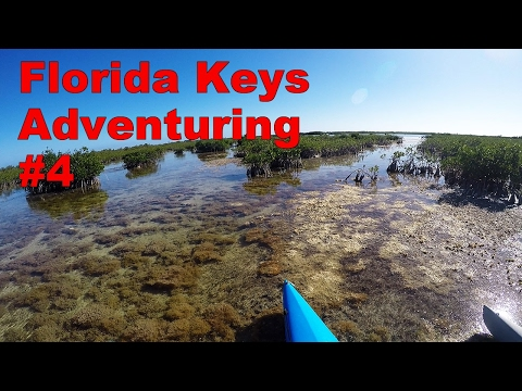Adventuring #4 - Up The Keys Without A Paddle