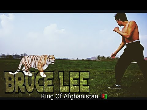 Bruce lee afghan HD video