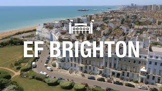 EF Brighton ‒ Tour of the School