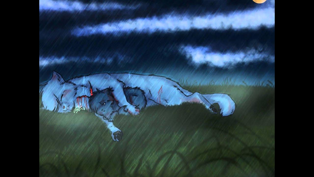 Warrior Cats Dark Forest Vs Starclan